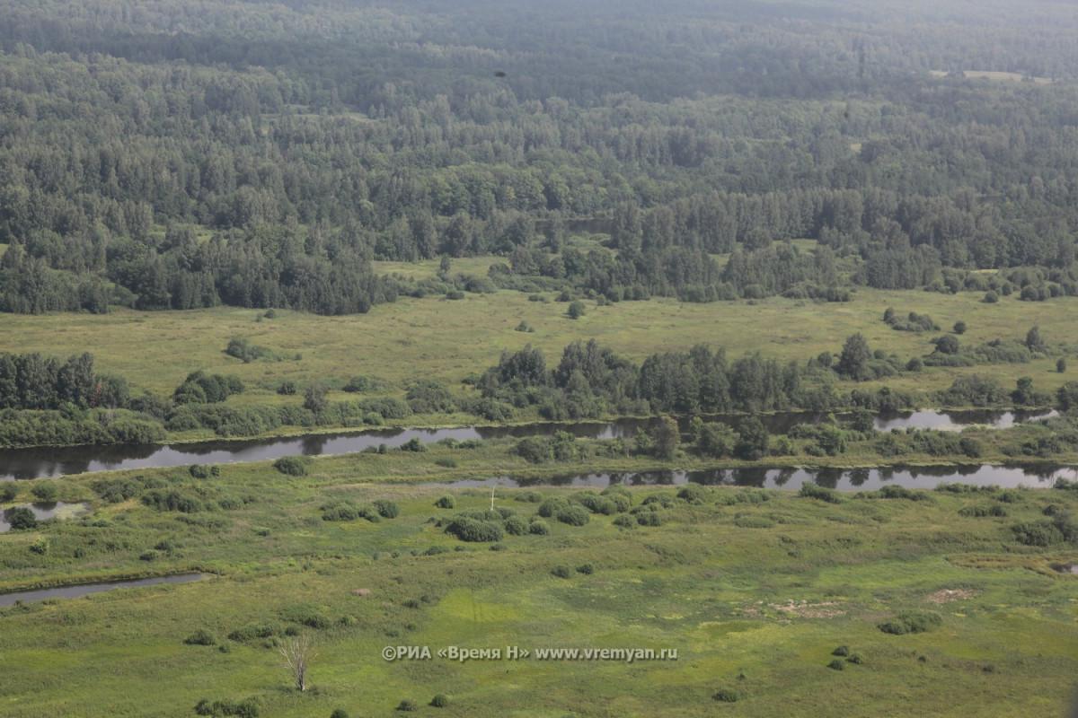 Определены территории для первого вНижегородской области национального парка