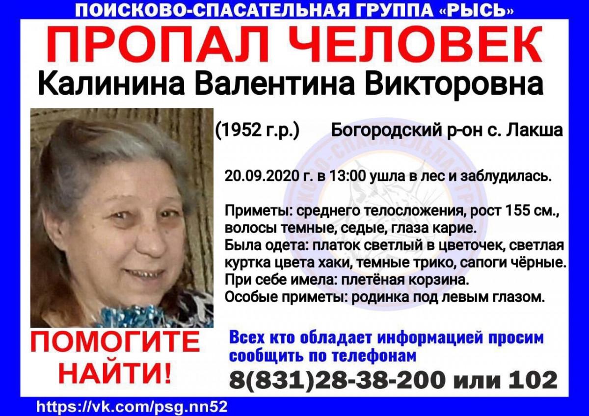 68-летняя Валентина Калинина пропала внижегородском лесу