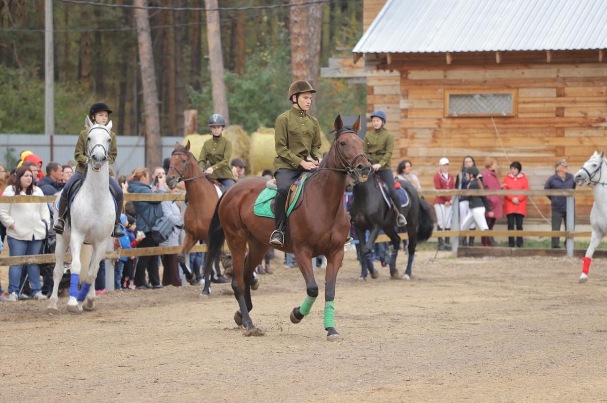 День лошади отметили вДзержинске