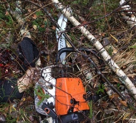 Жителя Кулебак судят загибель товарища вовремя рубки деревьев