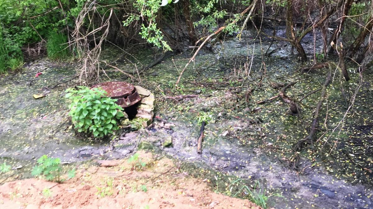 Семеновский «Горводоканал» причинил вред окружающей среде на4 млн рублей